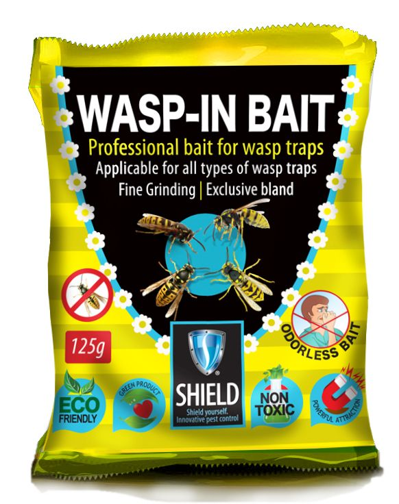 wasp in