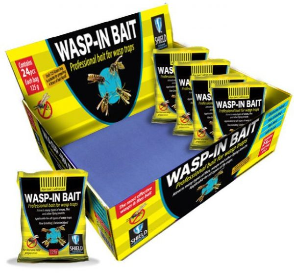 wasp in bait display